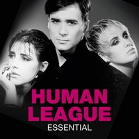 Essential — The Human League