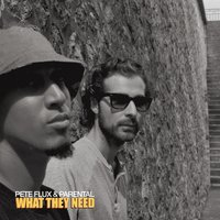 What They Need — Pete Flux & Parental