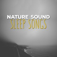 Nature Sound Sleep Songs — Sleep Songs with Nature Sounds