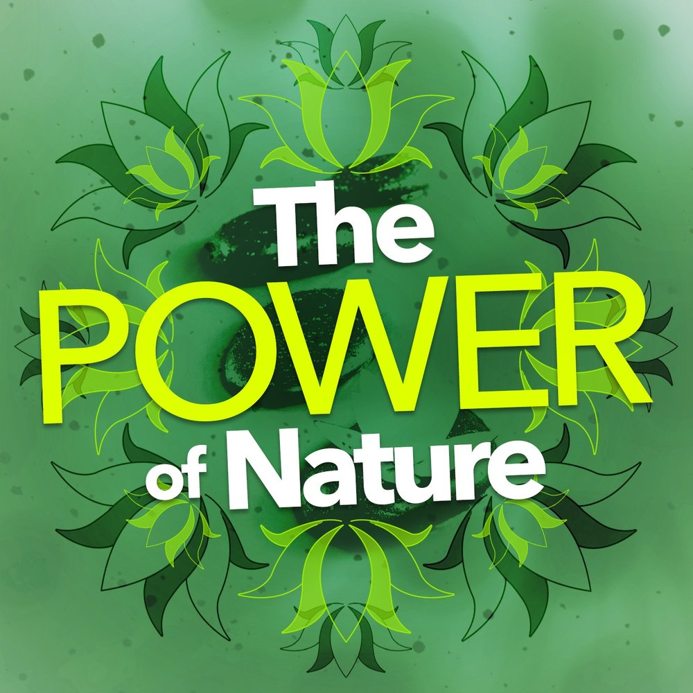 the restorative power of nature in The restorative powers of nature posted by david whitsel wednesday, may 11 th, 2016 ~ by kirsten antony rn, cr ~ as summer nears, most of us find ourselves wanting to spend time in the great outdoors the sunshine, the beautiful flowers, and the cool breeze seem to beckon us to take a walk, work in the garden, or just sit and take in the.