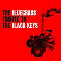 The Bluegrass Tribute to The Black Keys — Pickin' On Series, BRAD DAVIS