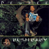 Bush Baby — Degree