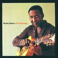 The Anthology — Muddy Waters