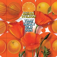 That Lucky Old Sun — Brian Wilson