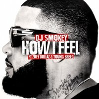 How I Feel - Single — Dj Smokey