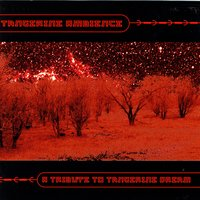 Tangerine Ambience - A Tribute To Tangerine Dream — сборник