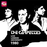 Live London University 1980 — The Carpettes