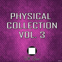 Physical Collection Vol.3 — сборник