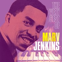 The Very Best Of — Marv Jenkins