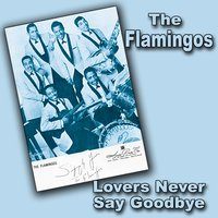Lovers Never Say Goodbye — The Flamingos