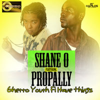 Ghetto Youth Fi Have Things - Single — Shane O, Propally