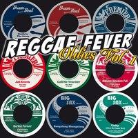 Reggae Fever Oldies, Vol. 1 — Barry Bailey