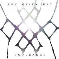 Endurance — Any Given Day
