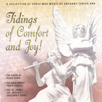 Tidings of Comfort and Joy — Anthony Tabish