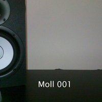 All Remote EP (Moll 001) — Ruly Moll