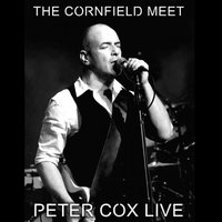 Live at the Cornfield Meet - Peter Cox Live — Peter Cox