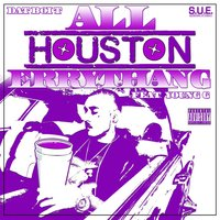 All Houston Errythang — Dat Boi T
