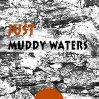 Just — Muddy Waters