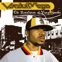 The Revolution Of Yung Havoks — Vordul Mega