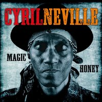 Magic Honey — Cyril Neville