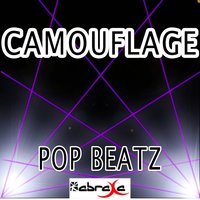 Camouflage - Tribute to Brad Paisley — Pop beatz