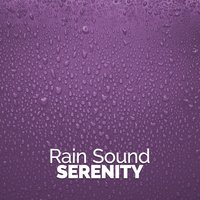 Rain Sound Serenity — Rain Sounds & Nature Sounds