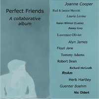 Perfect Friends — Joanne Cooper