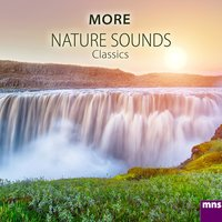 More Nature Sounds Classics — Relaxation Music M.n.S.