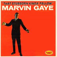 That Stubborn Kinda Fellow — Marvin Gaye