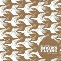 หลง — Brown Flying