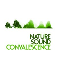 Nature Sound Convalescence — Relaxing and Healing Sounds of Nature