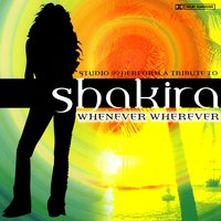 Shakira - Whenever Wherever — Studio 99