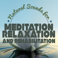 Natural Sounds for Meditation: Relaxation and Rehabilitation — White Noise for Meditation: Relaxation and Rehabilitation.