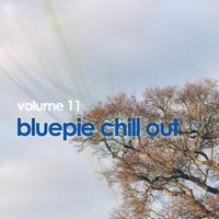Chill Out Vol. 11 — сборник