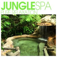 Jungle SPA - Pure Relaxation — сборник