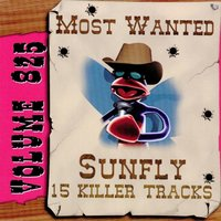 Most Wanted 825 — Sunfly Karaoke