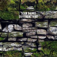 Different Vibe — Sean Danke
