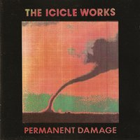 Permanent Damage — The Icicle Works