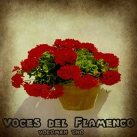 Voces del Flamenco Vol. 1 — сборник