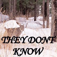 They Don't Know — L Shiz