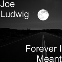 Forever I Meant — Joe Ludwig