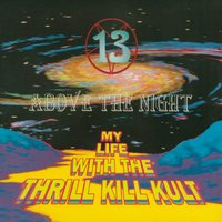 13 Above The Night — My Life With The Thrill Kill Kult