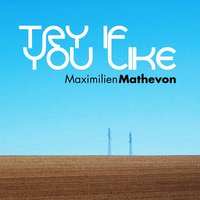 Try If You Like — Maximilien Mathevon