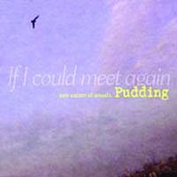 If I Could Meet Again (New Nature Of Sounds) — Pudding