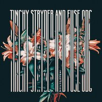 Imperfection - Mixes — Fuse ODG, Tinchy Stryder