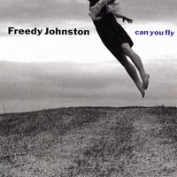 Can You Fly — Freedy Johnston