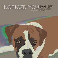 Noticed You — Evan Iff