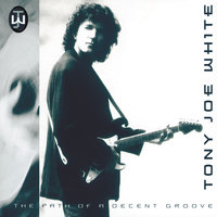 The Path Of A Decent Groove — Tony Joe White