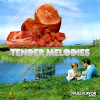 Tender Melodies — Mike Disco