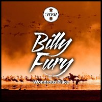 Wondrous Place — Billy Fury